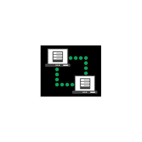 Standard Virtual Server