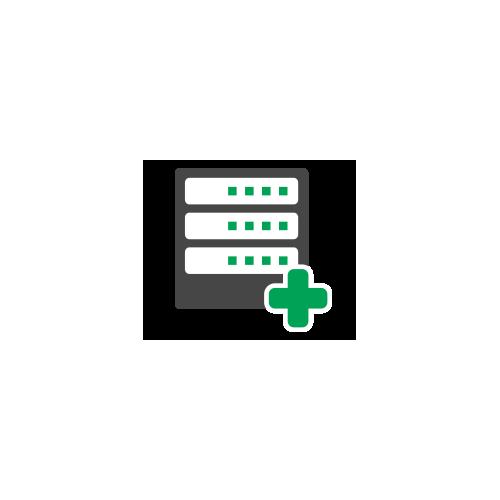 Standard Dedicated Server